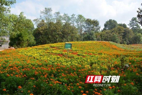 永州考虑要:11家景区被批准为国家3A级旅游景区