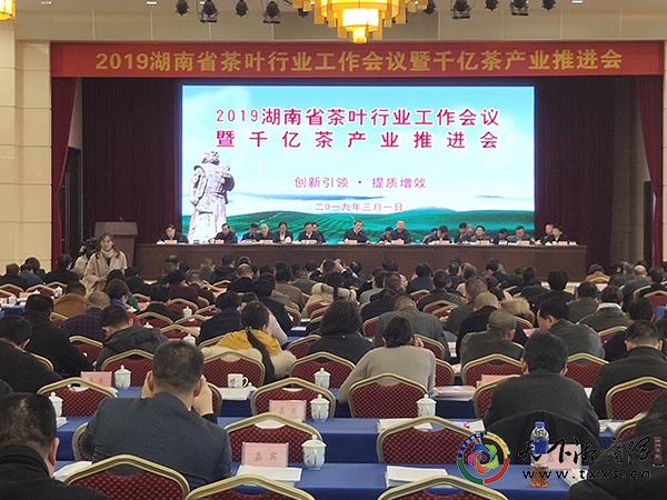 2019湖南省茶叶行业工作会议暨千亿茶产业推进会在湖南长沙举行